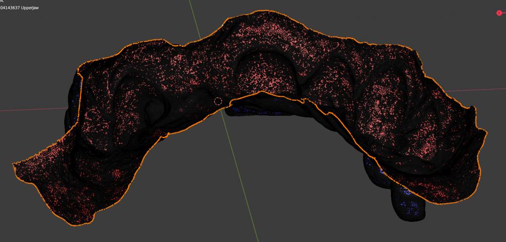 Seleccionar el borde del modelo dental digital en Blender.